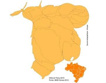 Carte sur la démographie du Brésil en 210