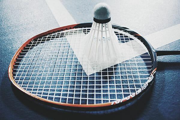 La federation francaise de badminton utilise cartes et donnees