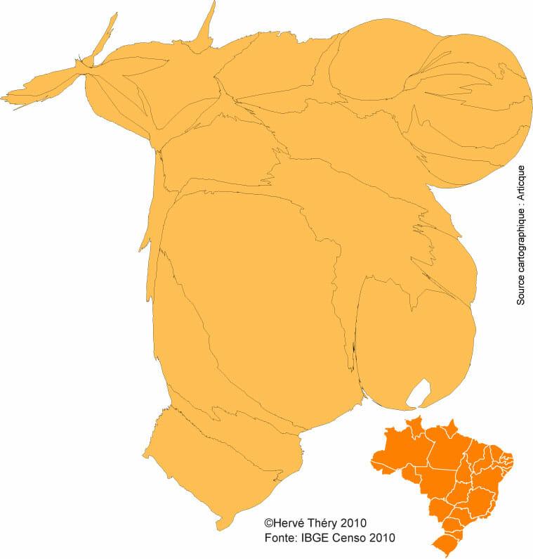 La démographie du Brésil en 2010
