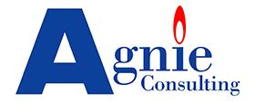 logo_agnie