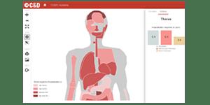 Cartographie du corps humain