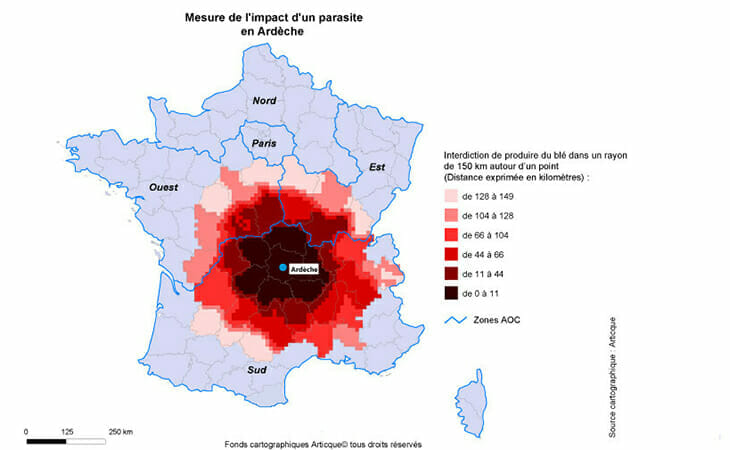 Cartographie de l'impact d'un parasite sur la production de blé en Ardèche