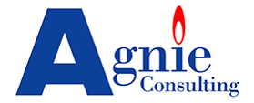 Logo d'Agnie consulting