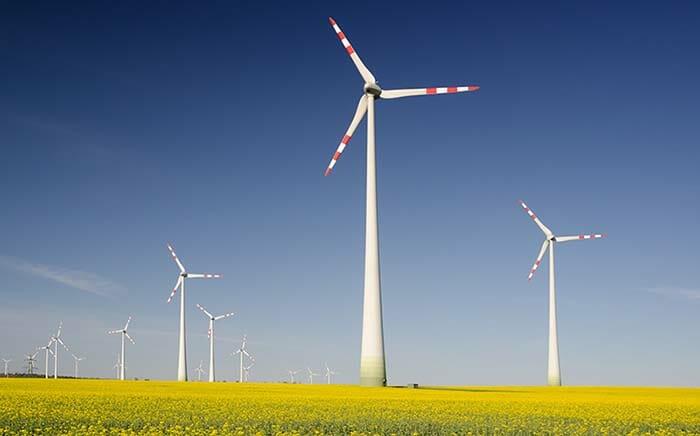 ENR et géomarketing : la croissance verte