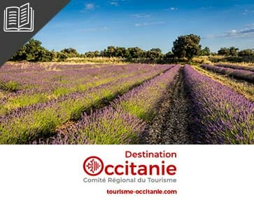 Miniature témoignage CRT Occitanie
