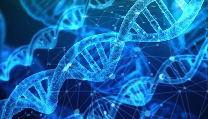 Sectorisation automatique avec un algorithme genetique